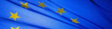 Ny EU-moms hotar småföretag